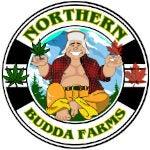 Northern Budda Farms