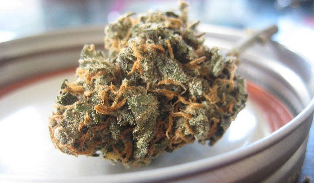 Marijuana Work for IBS
