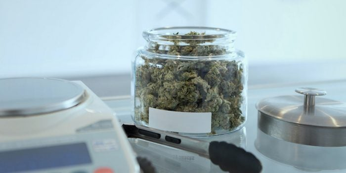 Toronto Cannabis Dispensaries