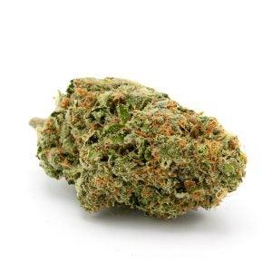 Top Cannabis Strains White Sumo