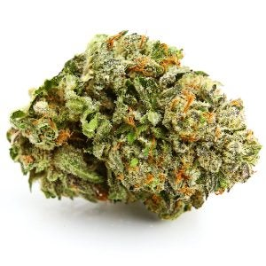 Top Cannabis Strains Zombie Kush