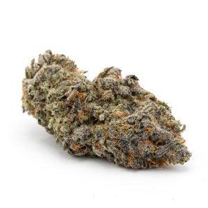 Top Cannabis Strains Purple God
