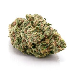 Astro Boy Best Strain For Laughing