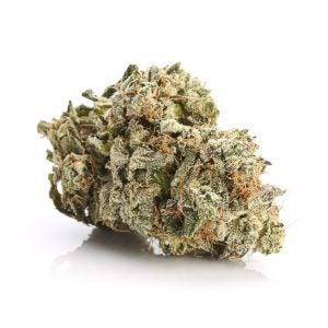 El Muerte Exotic Marijuana Strains