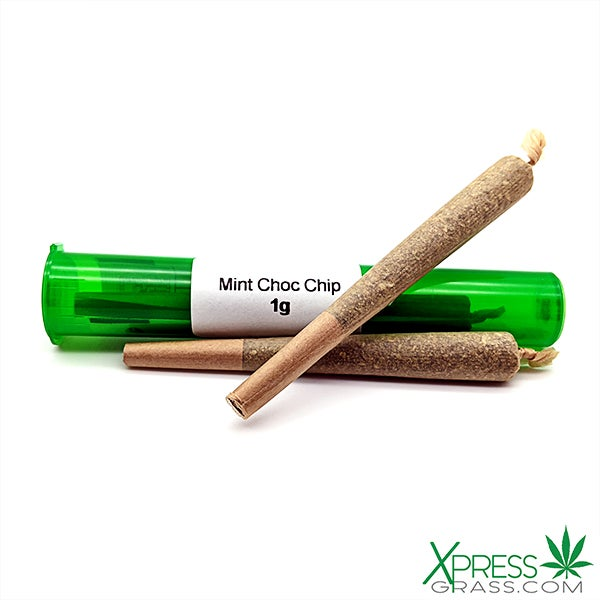 Mint Chocolate Chip Pre Roll