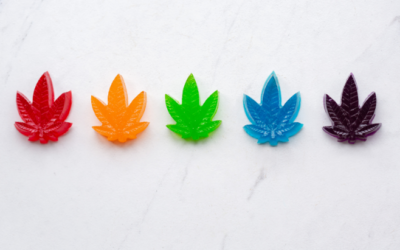 A Deeper Look at CBD Gummies on the Market in Canada