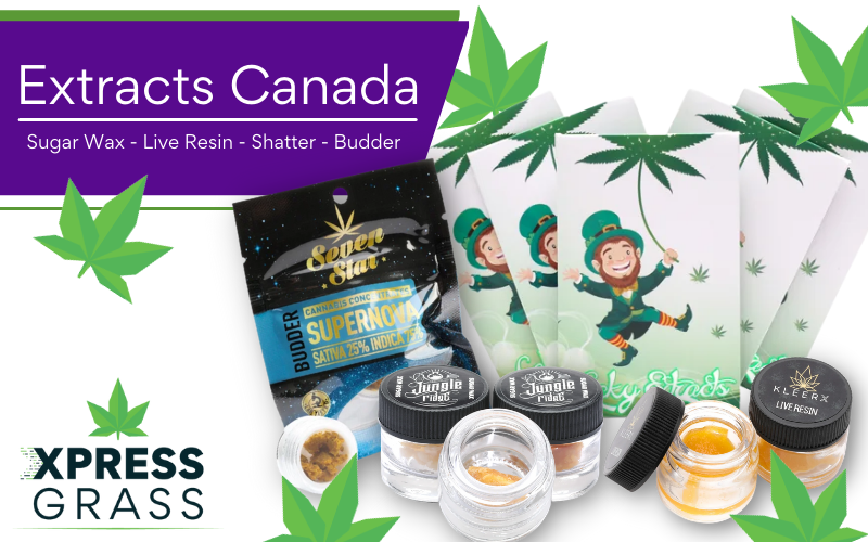 Extracts Canada – Concentrated Sugar Wax, Resin, Shatter & Budder